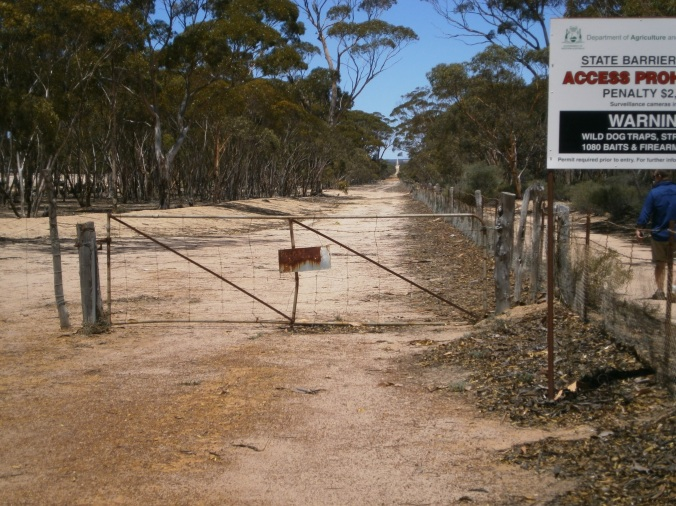 Signs:  The Rabbit Proof Fence